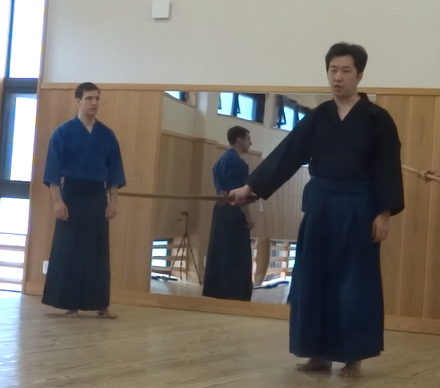 Tennen Rishin Ryu and Bokuden Ryu